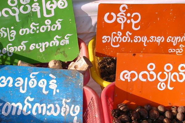Learn about the Burmese Language